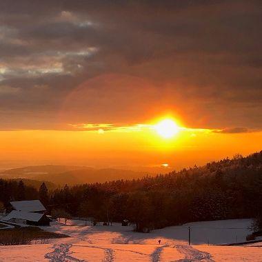 Blick aufs Donautal von Brieberg - Andrea Biederer